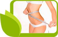 Билки за отслабване, доказано действие на 13 ефективни билки за намаляване на теглото