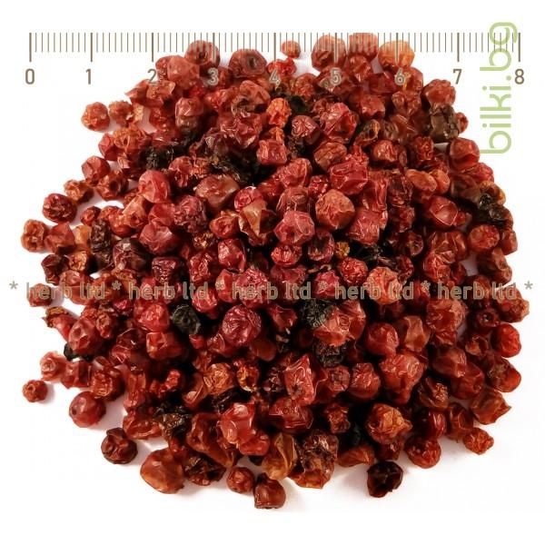 червена боровинка билка