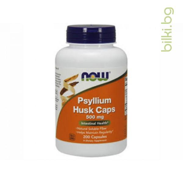 фибри,psyllium husk,now foods,500 мг,200 капсули,фибри от индийски хвощ