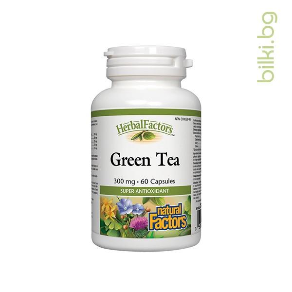 зелен чай, телесно тегло, оксидативен стрес