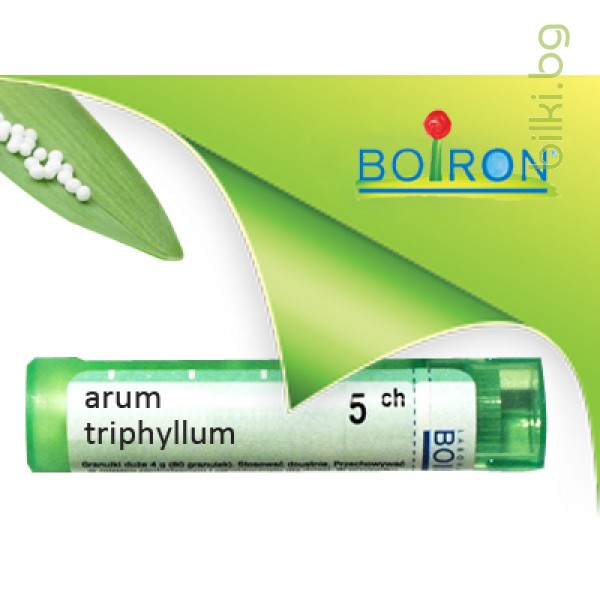 arum triphyllum, boiron