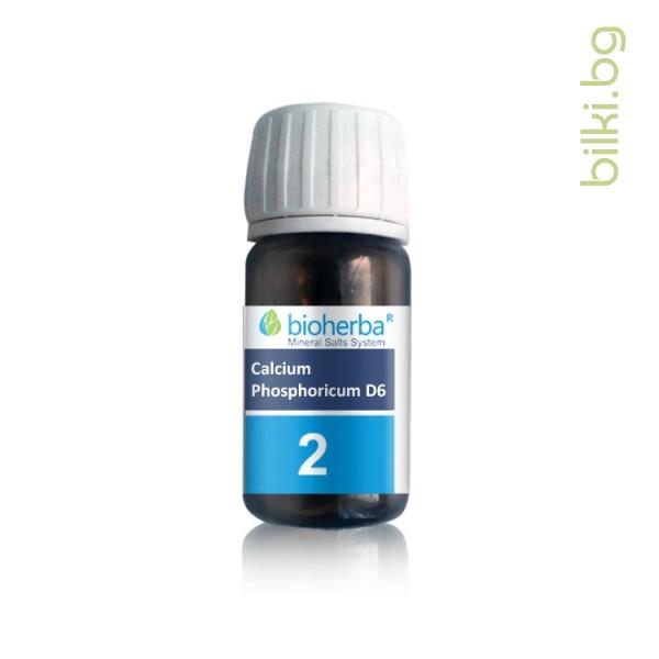 шуслерова,сол №2, calcium phosphoricum d6, калциум фосфорикум