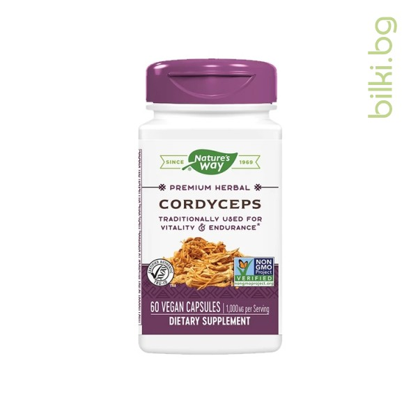 кордицепс за жизненост и енергичност