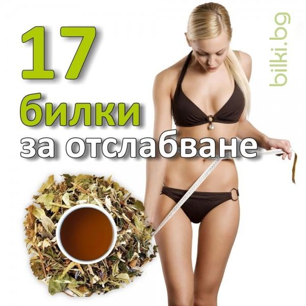 17 билки за отслабване чай, билков чай за отслабване, 17 билки за отслабване чай мнения