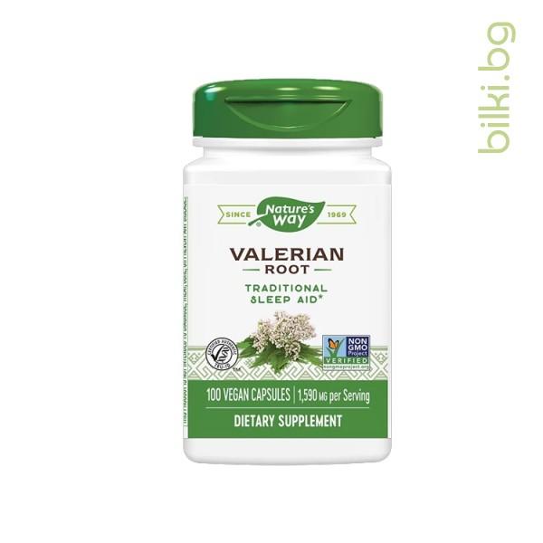 валериана корен
