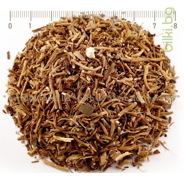 иглика корен, билка, иглика чай, иглика цвят, иглика при стрес
