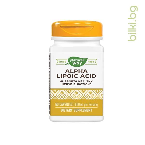 алфа-липоева киселина, антиоксидант