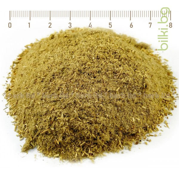 сминдух, trigonella foenum-graecum l.