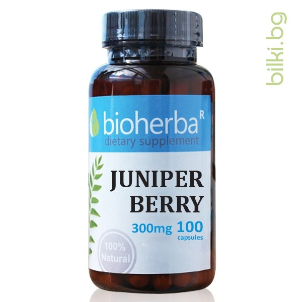 плодове от синя хвойна, juniper berry, капсули, синя хвойна,