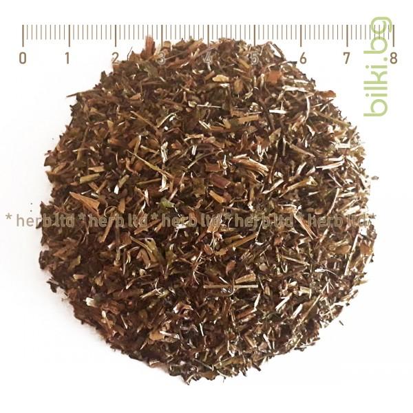 цъфтящ чай, бял чай