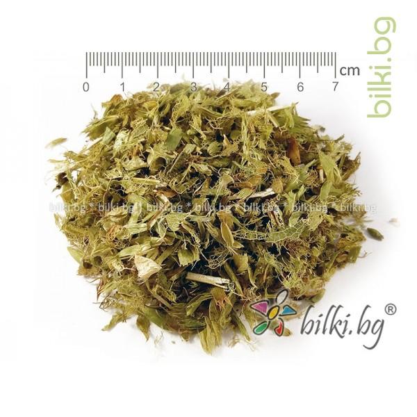 мурсалски чай рязан, рязан ,пирински чай, стрък ,билка