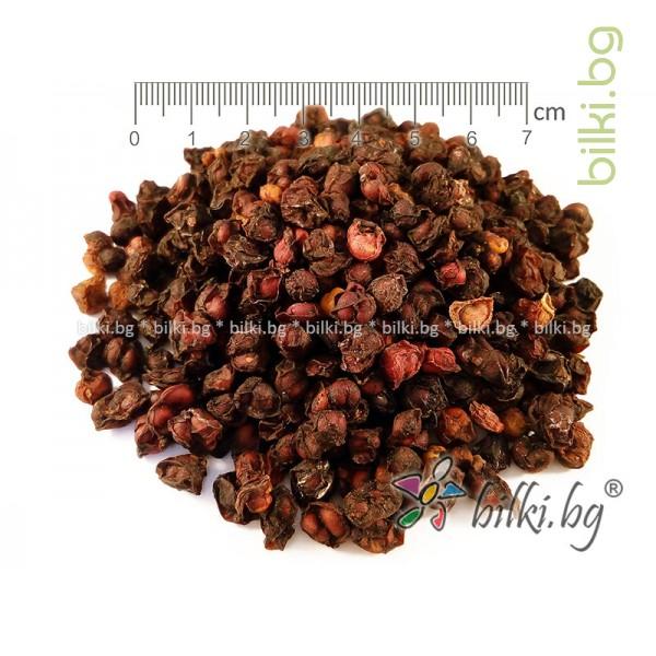 шизандра червена билка