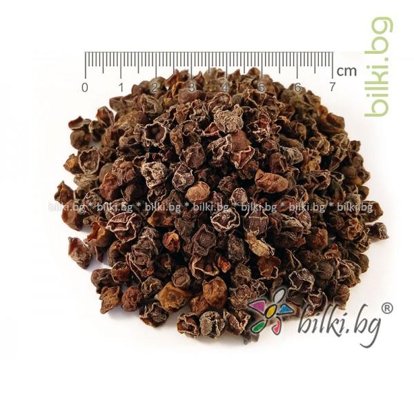 шизандра черна билка