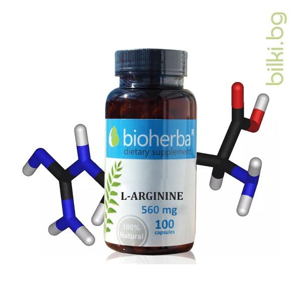 л-аргинин, амино киселина, сърдечносъдова система
