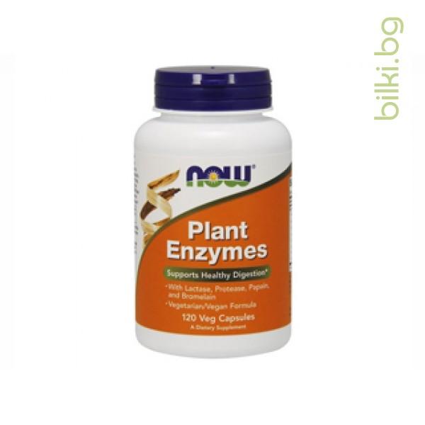 растителни ензими,plant enzymes,now foods