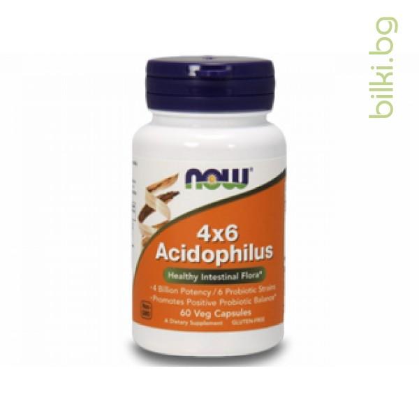 ацидофилус,acidophilus,пробиотици,здрава чревна флора,перисталтика