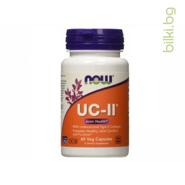 UC-II Type II Collagen,неденатуриран тип II колаген,now foods