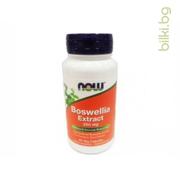 boswellia extract,екстракт от смола на босвелия,now foods