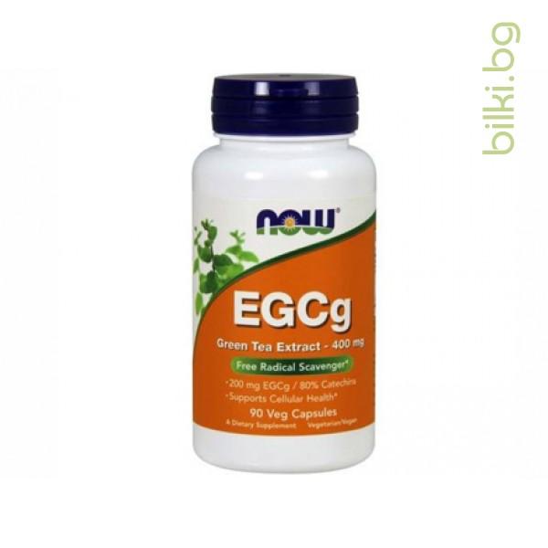 зелен чай,egc,EGCg,green tea extract,now foods,964 мл