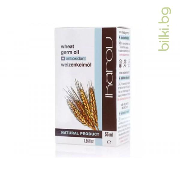 пшенично масло, икаров