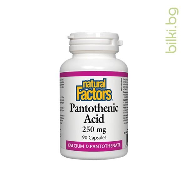 пантотенова киселина, natural factors, нормален