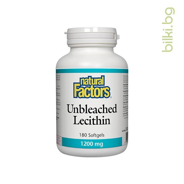 лецитин, холестерол, нормалната функция, мозък