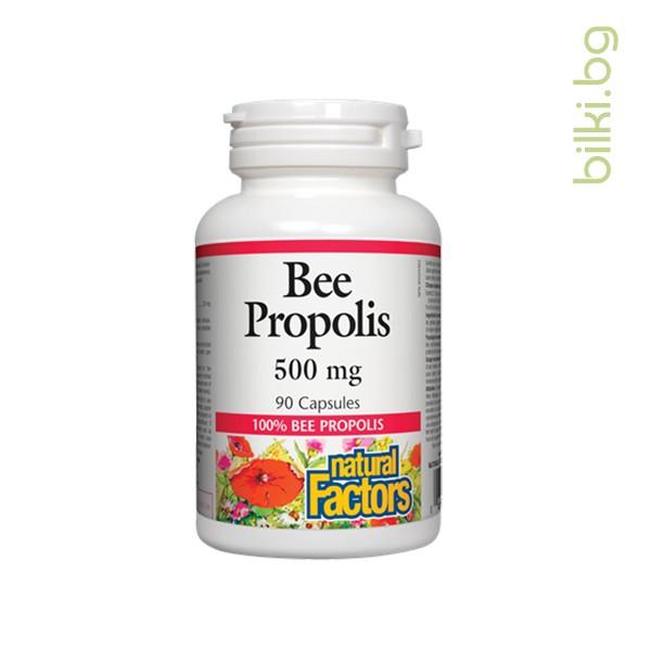 прополис, функция, имунна система