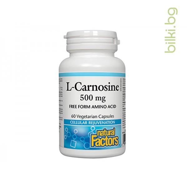 Л-Карнозин 500 mg x 60 V капсули