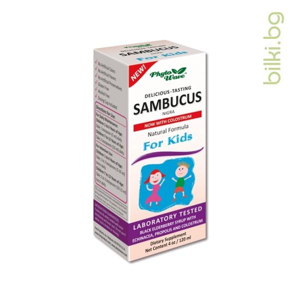 самбукус нигра, деца, сироп, сироп за деца