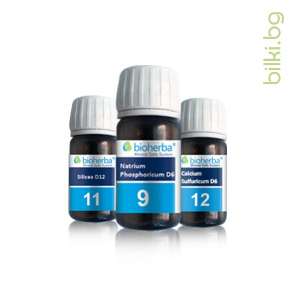 ревматизъм, шуслерови соли 9, шуслерови соли 11, шуслерови соли 12