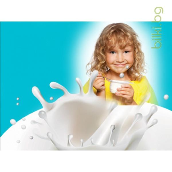 закваска за кисело мляко