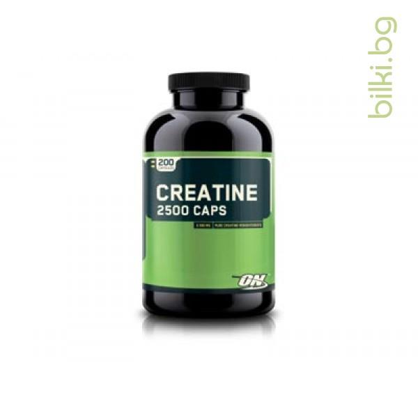creatine 2500, протеини