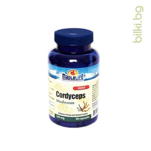 Кордицепс,мощен имуностимулант