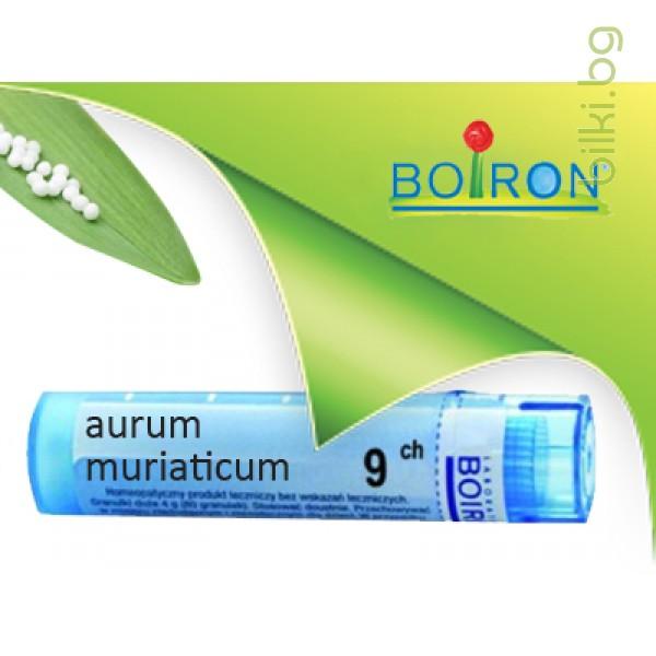 аурум, aurum muriaticum, ch 9, боарон