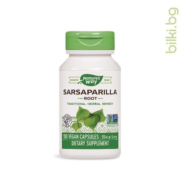 сарсапарила корен
