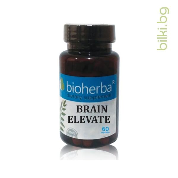 мозъчен тонус, brain elevate, капсули