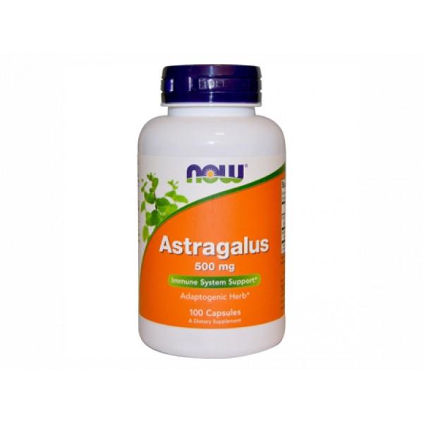 астрагал,аstragalus,now foods,имунна система,оздравителни процеси,