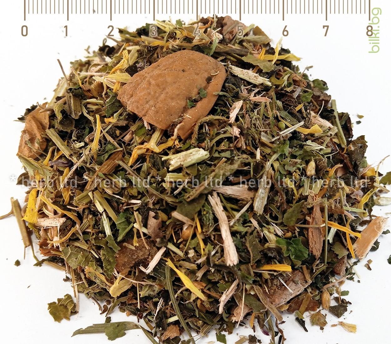 Плавун (Lycopodium clavatum). Билките на Мария Требен.
