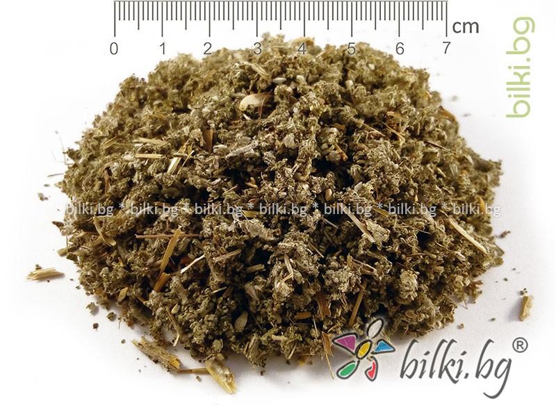 градински чай билка