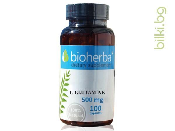 л-глутамин, подхранване, мускули