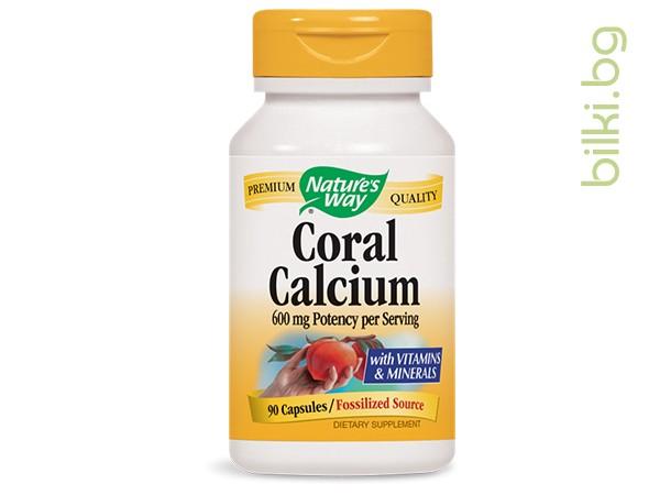 корал калций, кости