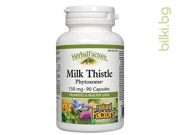 млечен бодил, фитозоми, функциониране