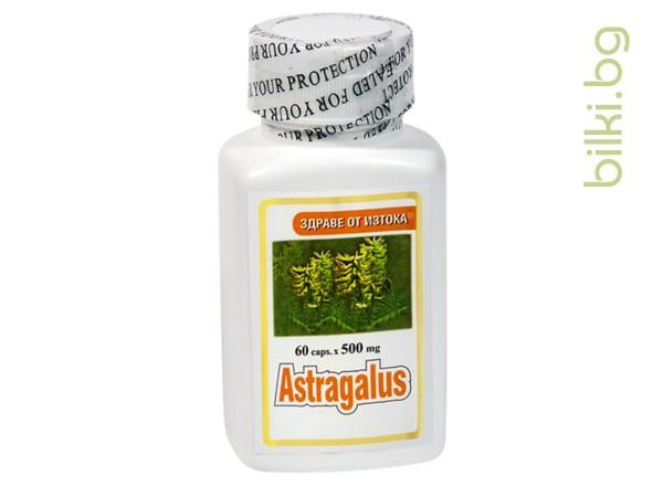 екстракт от астрагал капсули,устойчивост на организма