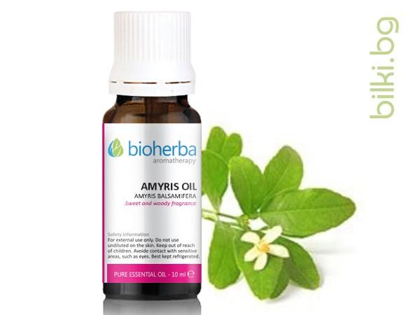 масло амирис, амирис, amyris balsamifera, oil