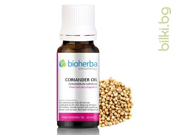 масло от кориандър, кориандър, coriandrum sativum
