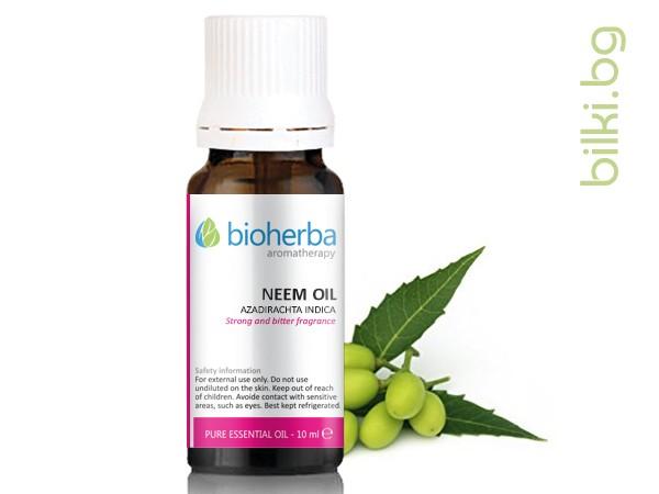 масло от нийм, нийм, azadirachta indica kernel, oil