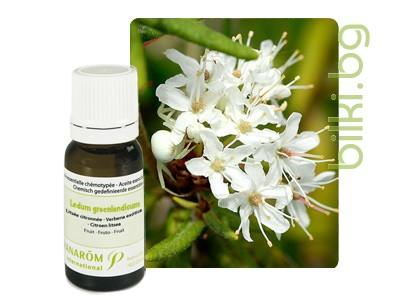 етерично масло от рододендрон, азалия, пранаром