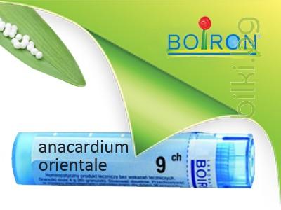 анакардиум, anacardium orientale, ch 9, боарон