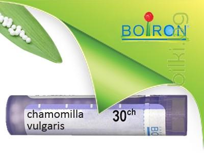 chamomilla vulgaris, boiron