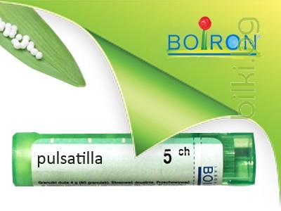 Пулсатила, PULSATILLA CH 5, Боарон